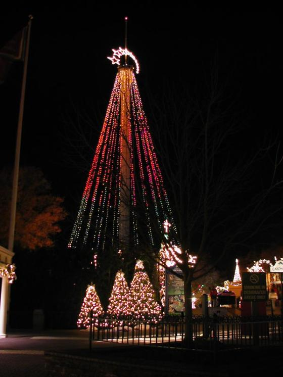 The tallest tree in Charlotte!Courtesy of themeparkreview.com