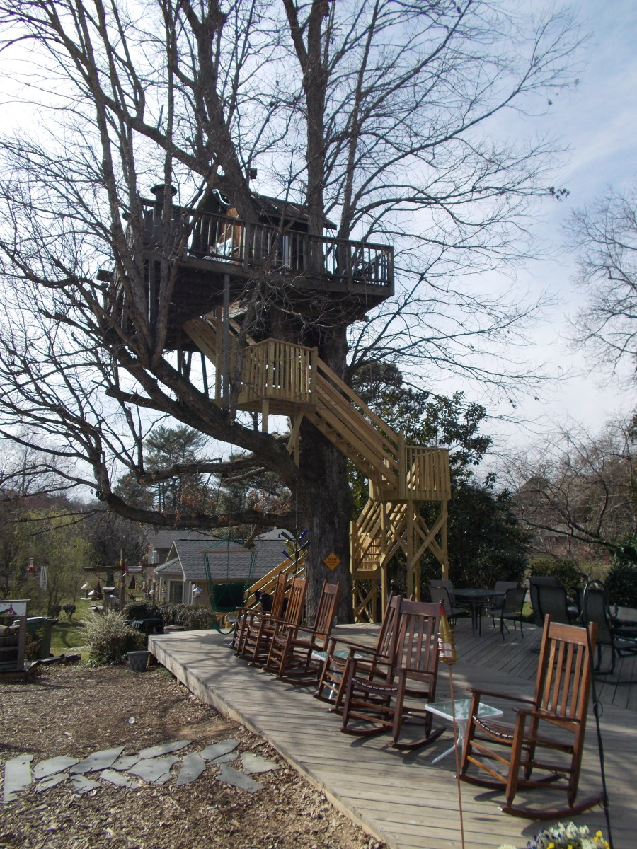 Time to Wine: Treehouse Vineyards